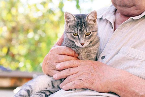 Garde-d-animaux-entre-particuliers